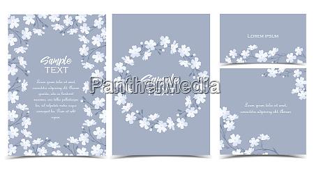 vector white flowers