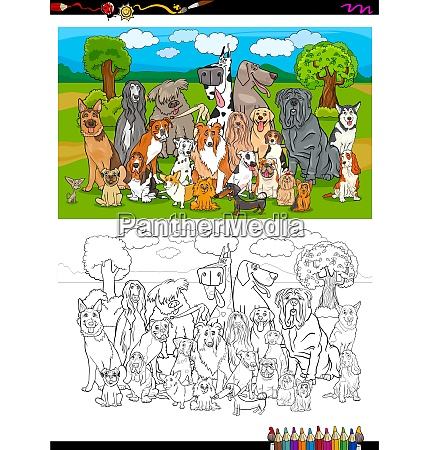 purebred dogs group coloring book