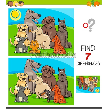 differences game with purebred dogs
