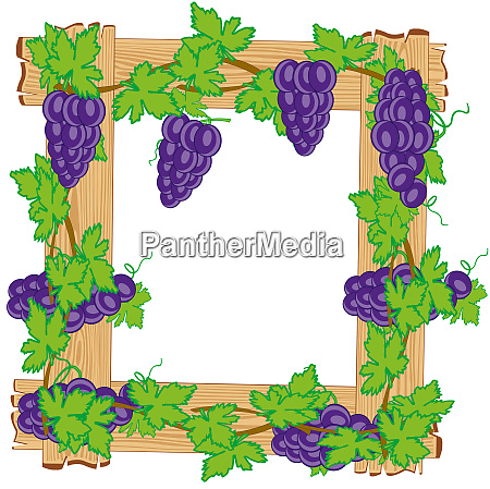 frame from boards twining grapevine on