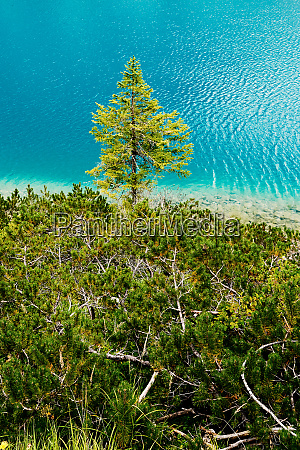 the pragser wildsee at daylight