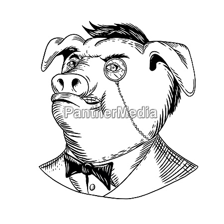 aristocratic pig monocle black and white
