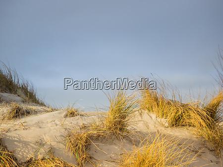 dune landscape on the island helgoland