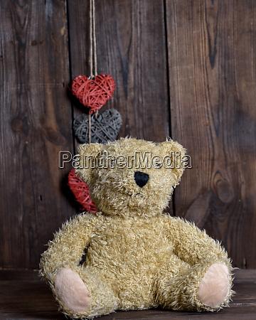 brown soft teddy bear sit on