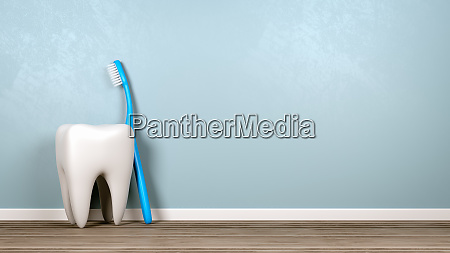 tooth and toothbrush in the room
