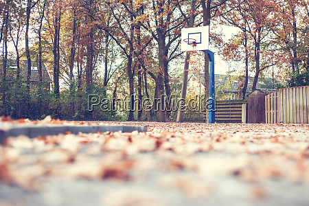 autumn in a park with basketball
