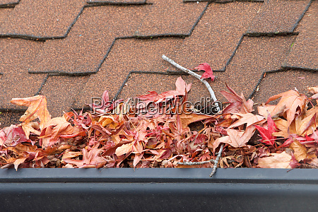 rain gutters on roof without gutter
