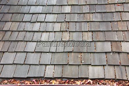 wood shingle roof on house rain
