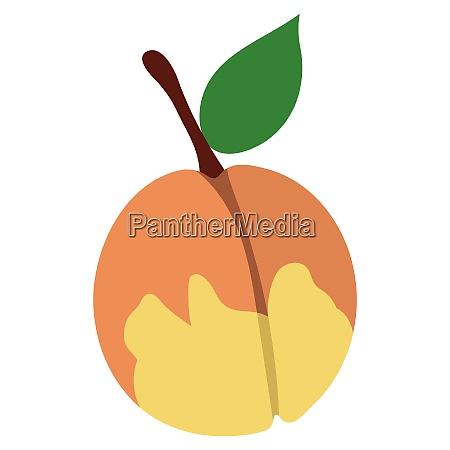 flat design icon of peach in