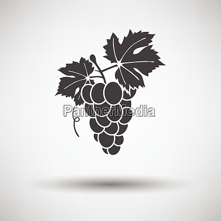 icon of grape icon of grape