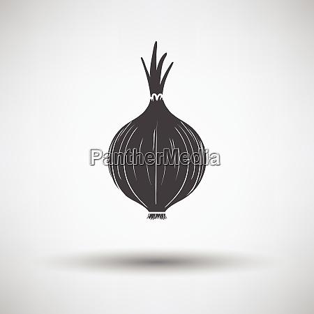 onion icon onion icon on gray