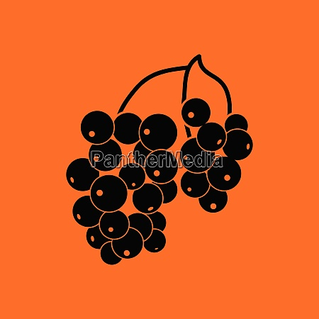 icon of black currant orange background