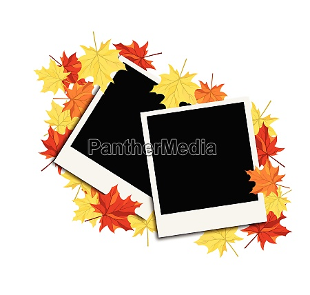 autumn frame with blank photograph