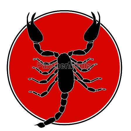 black scorpion silhouette icon vector illustration