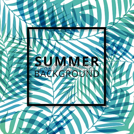 palm leave pattern summer background vector