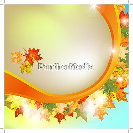 autumn maple leaves background vector illustration