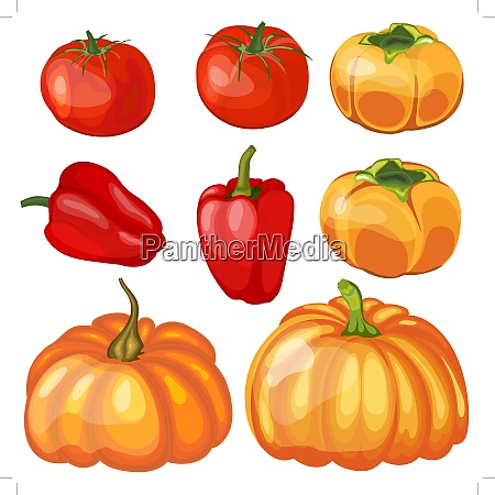 set of thankgivings day vegetable icons