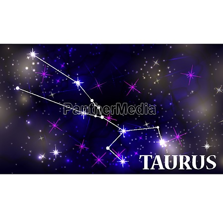 symbol taurus zodiac sign vector illustration