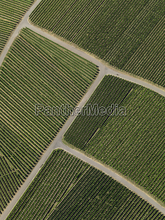 view from above textured green farmland