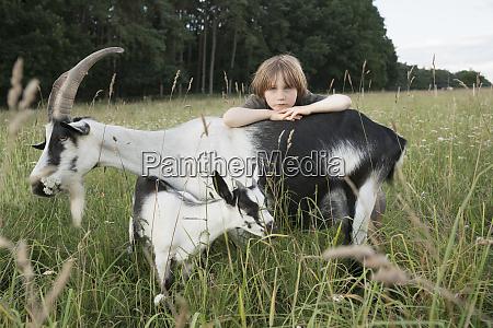 portrait girl leaning on goat in