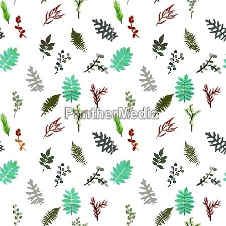 tropical elements agonis eucalyptus annona balata