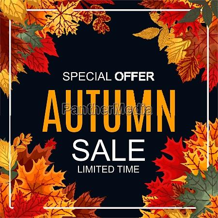 abstract vector illustration autumn sale background