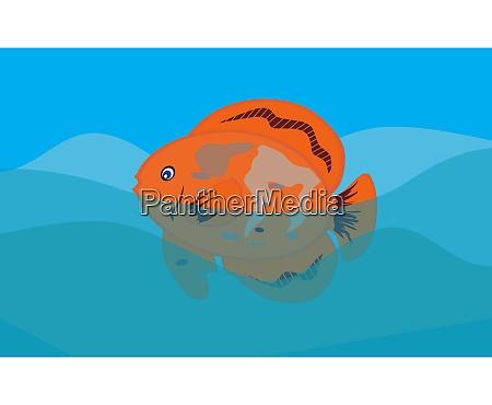orange fish in sea background vector