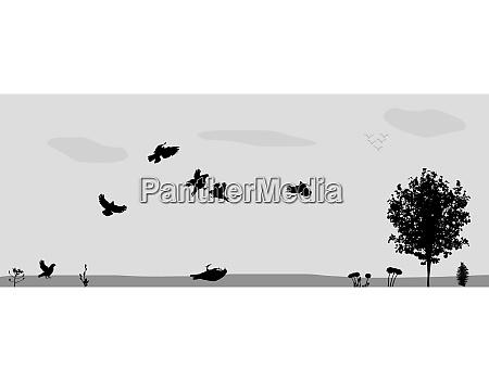 birds fly in nature vector illustration