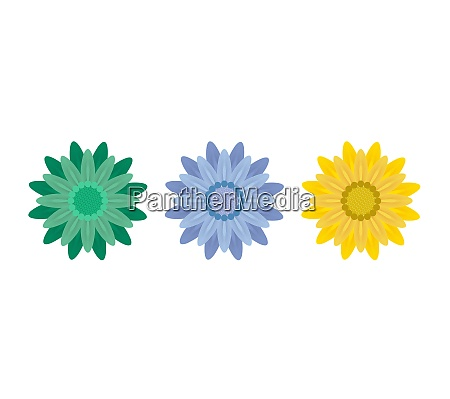 abstract flowers on white background vector