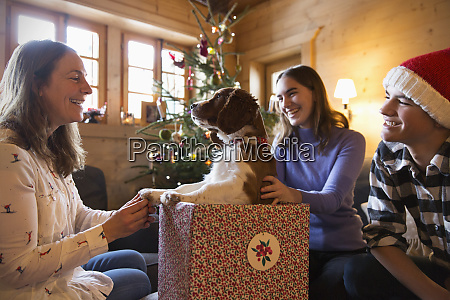 happy family with dog in christmas
