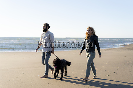 young couple walking with their dog