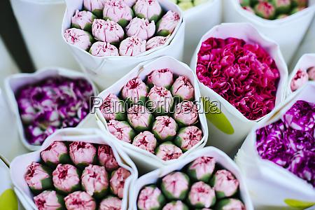 china hong kong bouquets of colourful