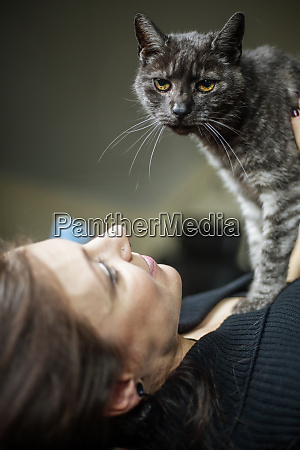 portrait of grey tabby cat and