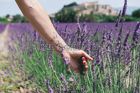 france provence grignan womans arm with
