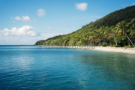 australia fitzroy island national park tropical