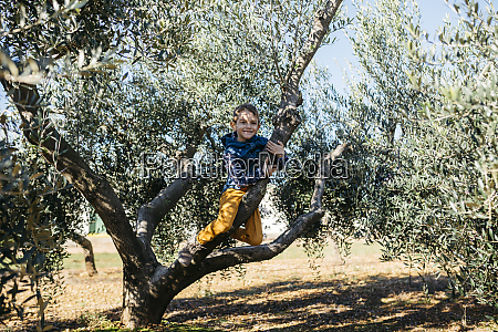 happy boy playing in an olive