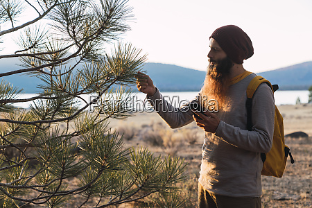 usa north california bearded man with