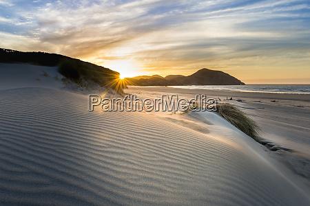 new zealand south island puponga wharariki