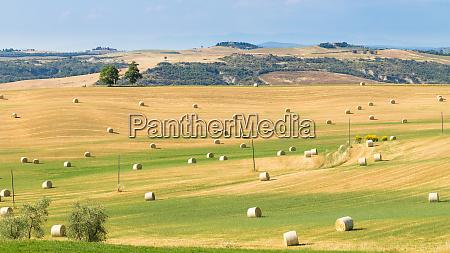 tuscany hills landscape italy