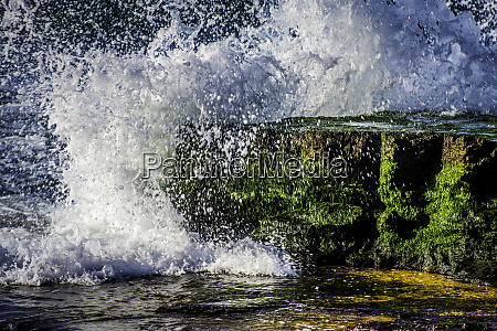 waves crashing on green moss covered