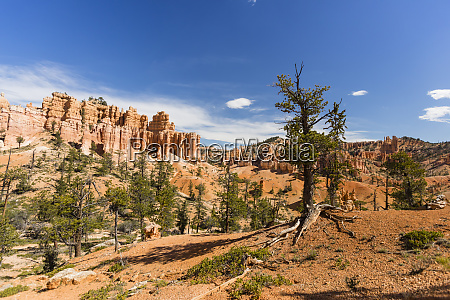 view of hoodoo formations from the