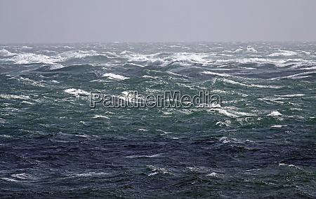 portland tide race in a force