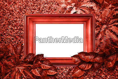living coral color background from leaves