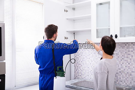 pest control worker spraying insecticide on