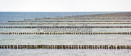 wooden breakwater stakes