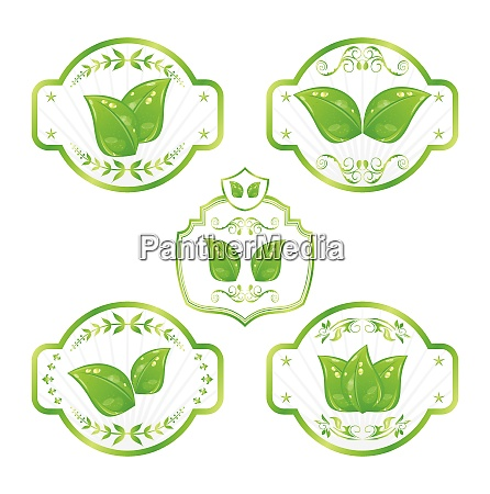 illustration set of green ecological labels