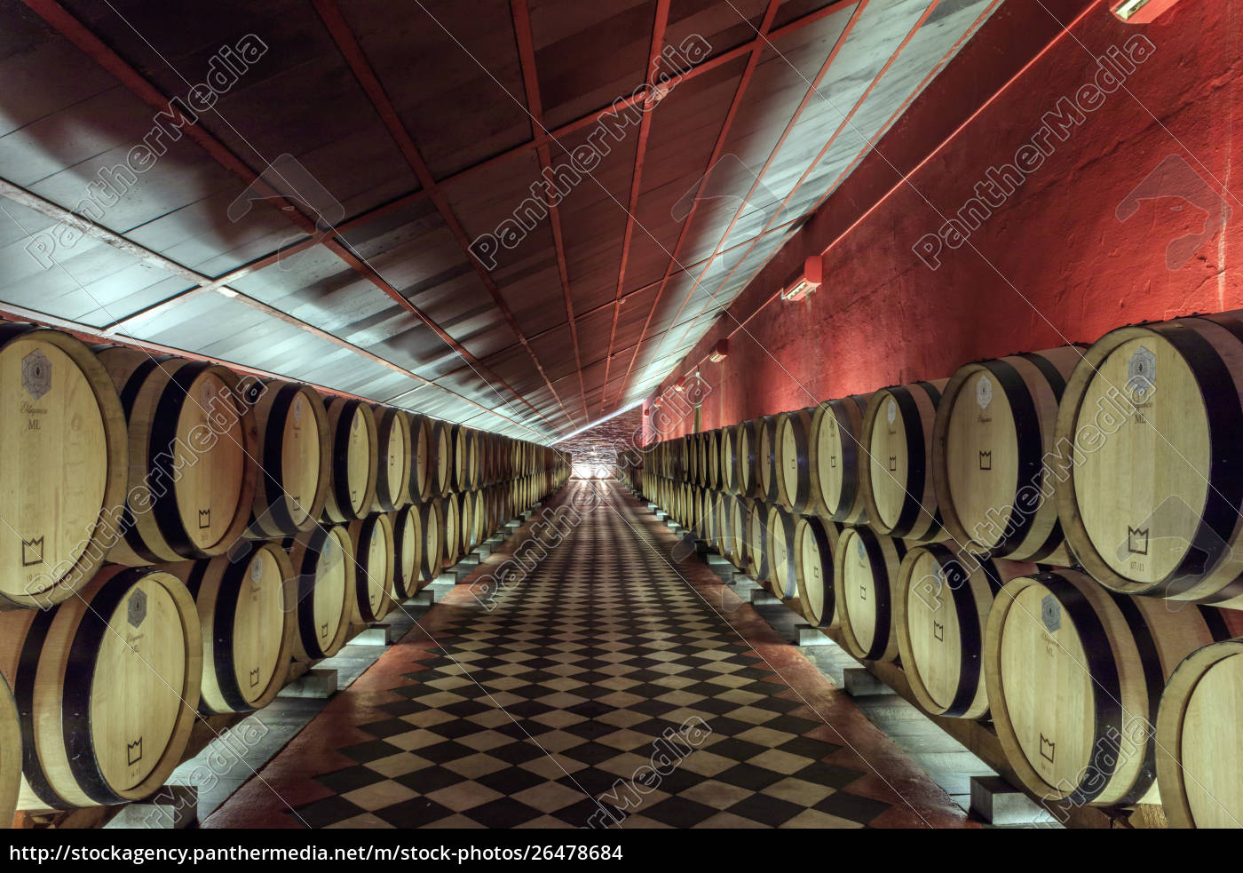 wine, barrels, in, the, cellars, of - 26478684