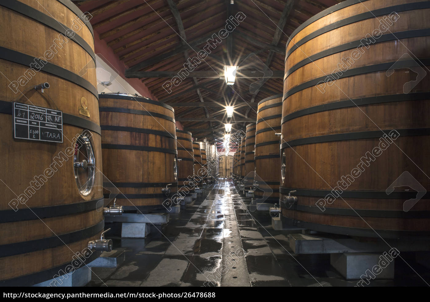 wine, barrels, storing, award-winning, portuguese, wine - 26478688