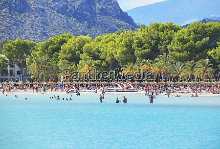 beach of port de alcudia mallorca