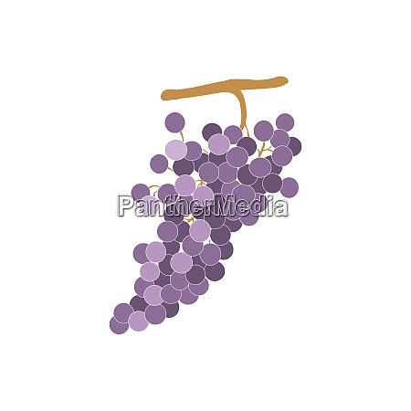 grapevine sign